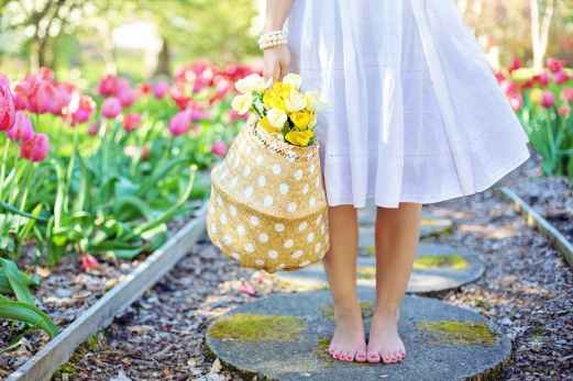 barefoot basket blooming blossoming