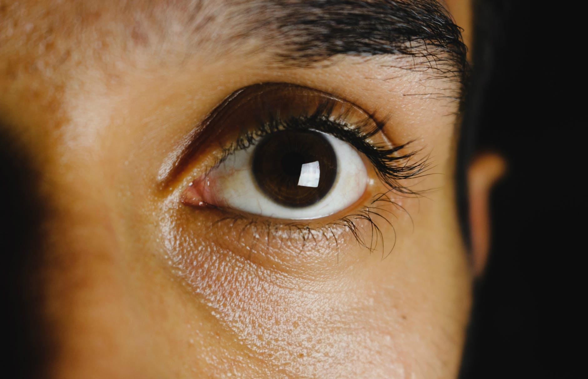 closeup photo of left human eye